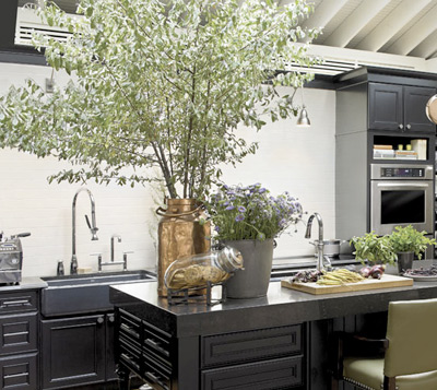 determine the theme style of your new kitchen - Kitchen Design San Francisco